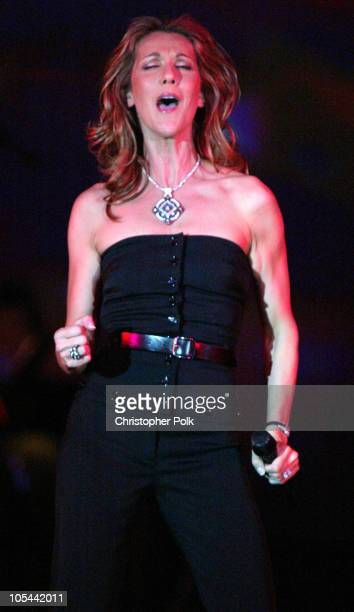 Celine Dion during Celebrity Fight Night at JW Marriott Desert Ridge in Phoenix AZ United States