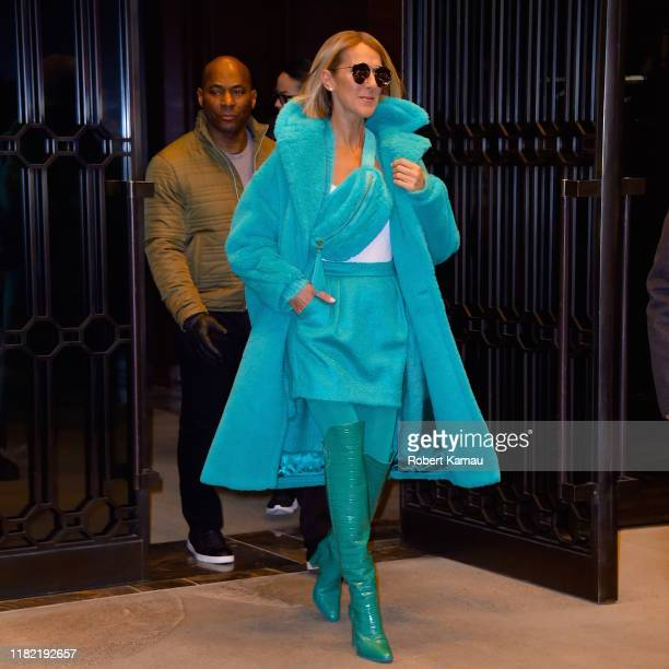 Celine Dion is seen on November 13, 2019 in New York City.