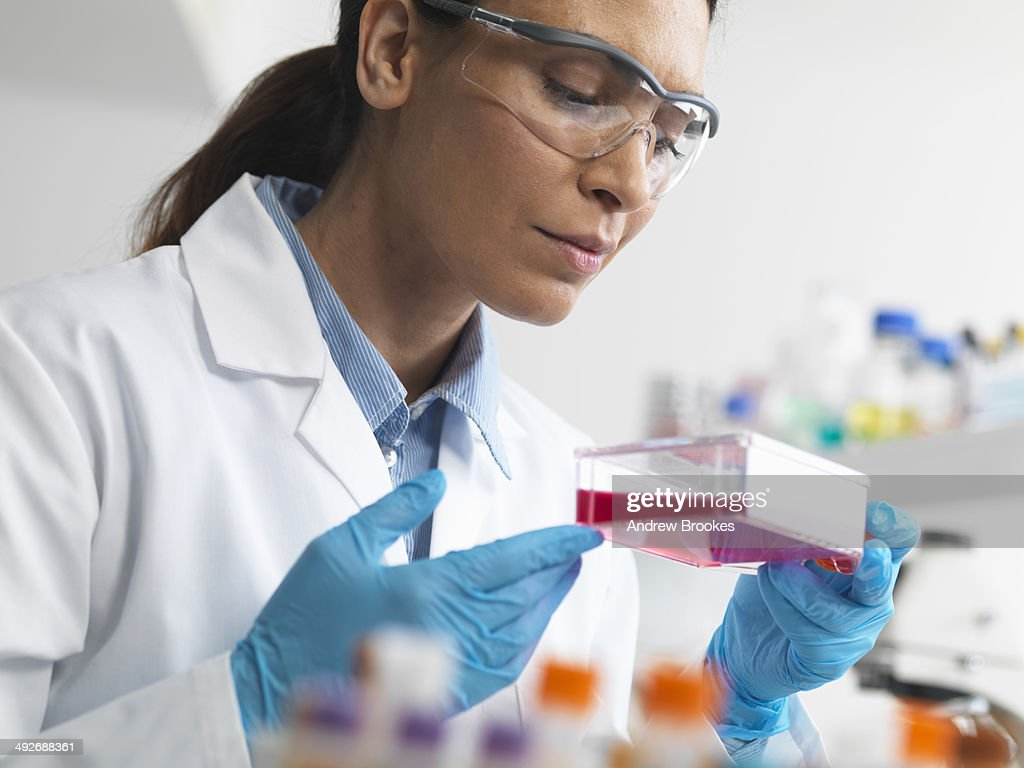 Cell biologist holding a flask containing stem cells, cultivated in red growth medium, to investigate diseases : Stock Photo