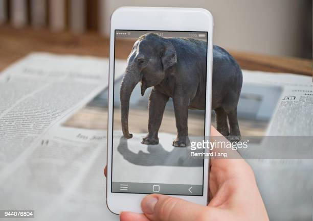 cell phone displaying elephant coming out of phone - realtà aumentata foto e immagini stock