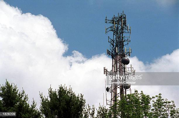 A cell phone tower rises above the trees June 25 2001 in Sudbury Massachusetts The 1996 federal Telecommunications Act prohibited communities from...