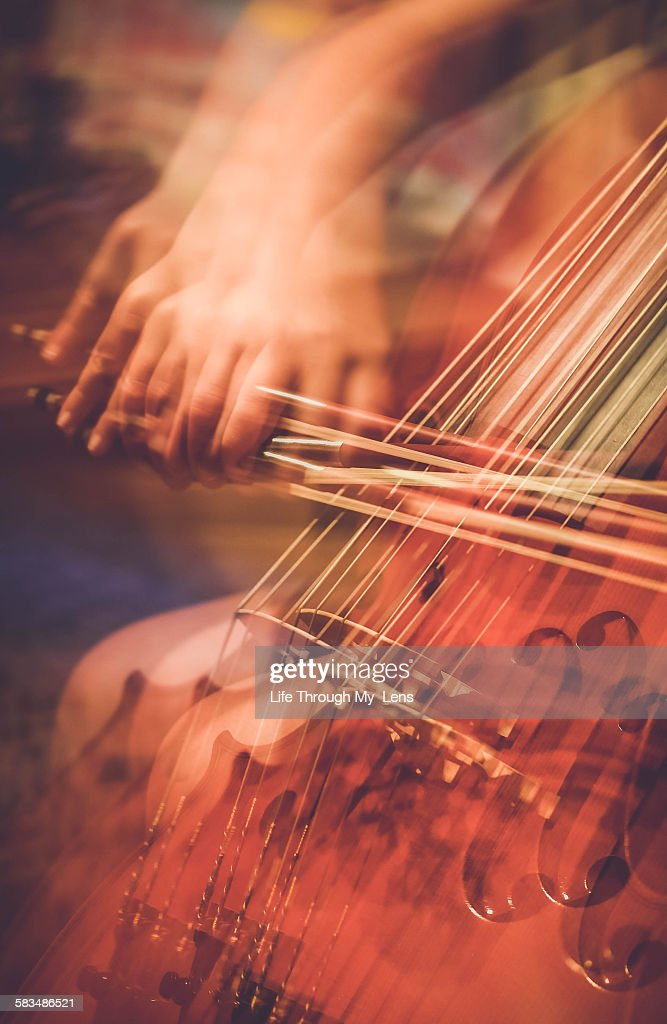 Cellist : Stock Photo