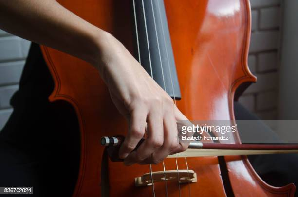 cellist - stringed instrument stock pictures, royalty-free photos & images