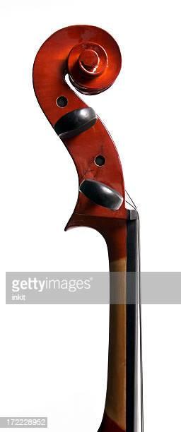 Cello Scroll Profile