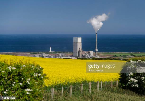 Cement factory near Dunbar, East Lothian, Scotland viewed over a field of yellow oilseed rape plants. This image from Doon Hill looking towards the...