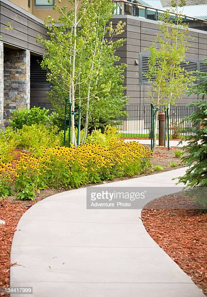 Cement Path with Scenic Flower Garden and Landscaping