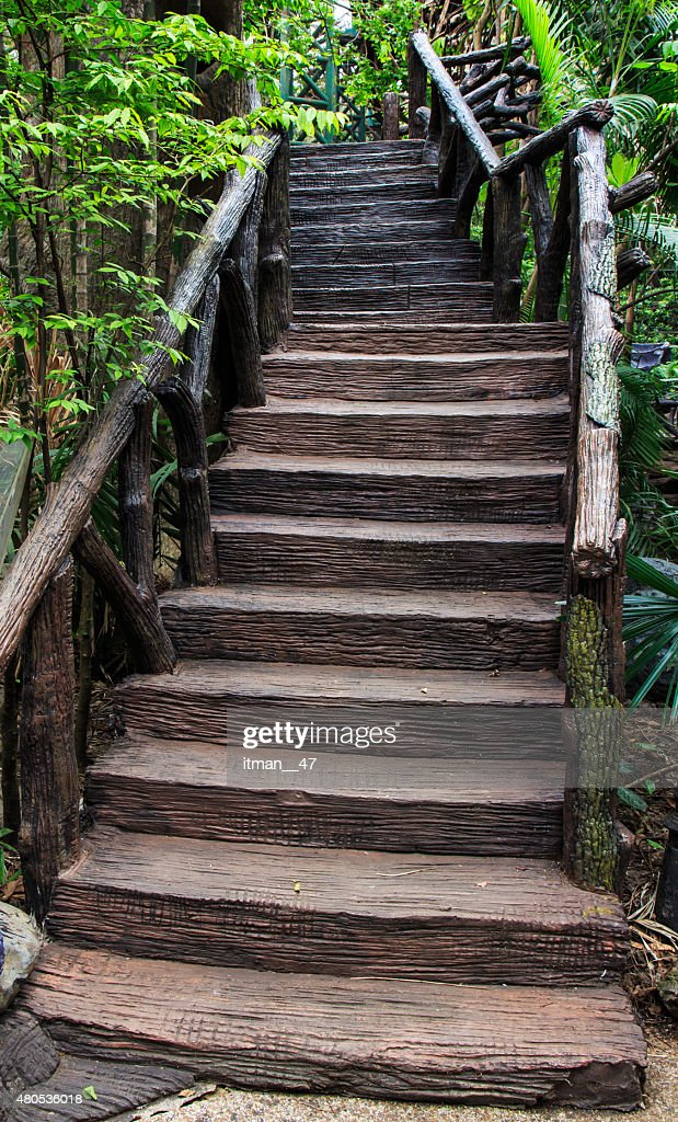 Cement escalier dans le jardin. : Photo