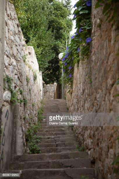 cement stairway and brick walls - suarez stock pictures, royalty-free photos & images