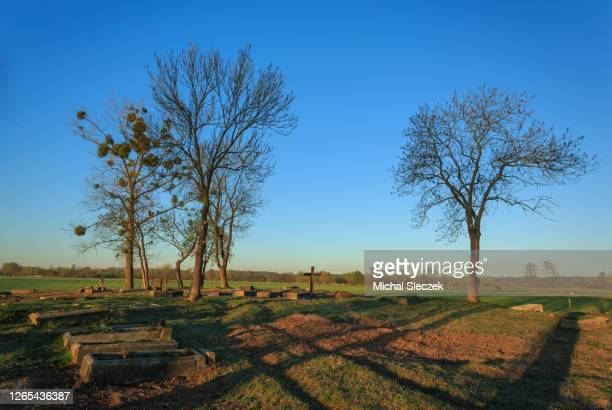 cementary - funeral stock pictures, royalty-free photos & images