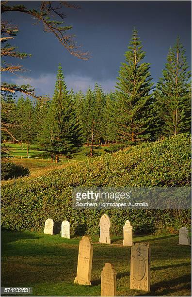 Cemetery Dawn