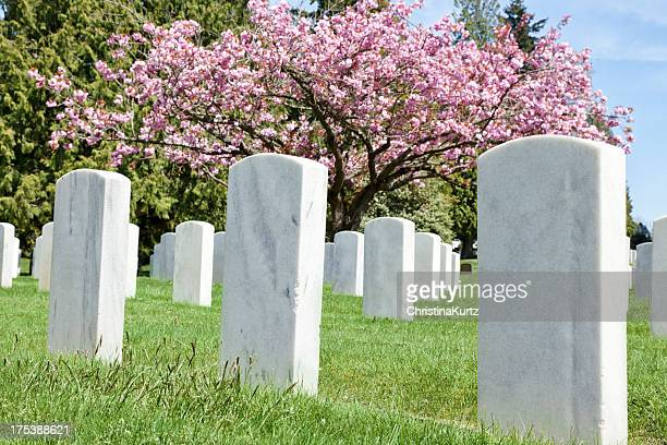 cemetery in spring - rest in peace stock photos and pictures