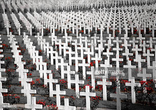 wwi cemetery in verdun - remembrance day stock pictures, royalty-free photos & images