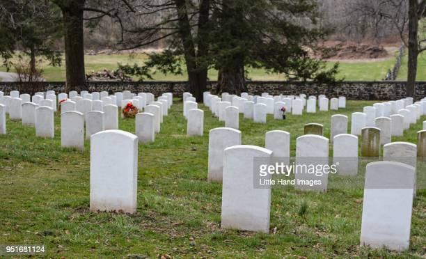 cemetery - friedhof stock-fotos und bilder