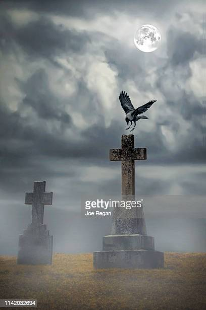 cemetery with moon - rest in peace stock pictures, royalty-free photos & images