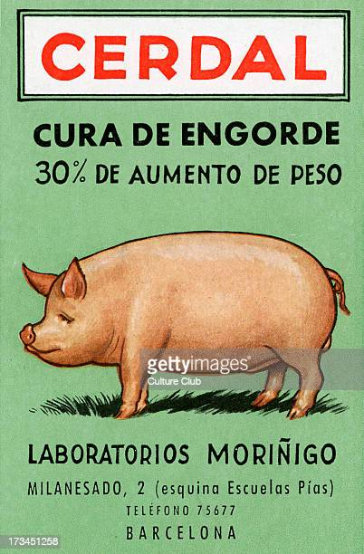 Cendral Spanish advert for pig feed by Laboratorios Morinigo Caption 'Cura de engorde 30 % de aumento de peso' / 'Fattening cure 30% increase in...