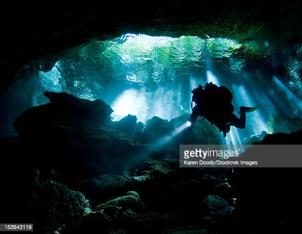 cenote diver enters taj mahal cavern on yucatan peninsula in mexico. - spelunking stock pictures, royalty-free photos & images