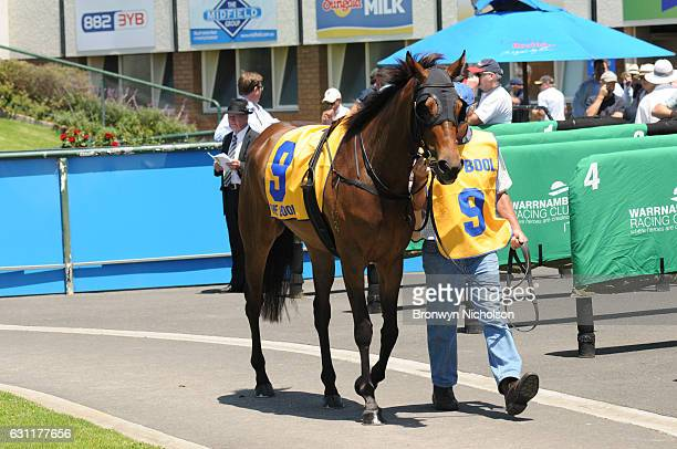 Centafloral parades before Gillear Lime Sandstone Quarries Maiden Plate at Warrnambool Racecourse on January 08 2017 in Warrnambool Australia