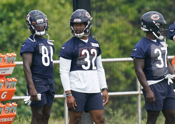 IL: Chicago Bears Training Camp