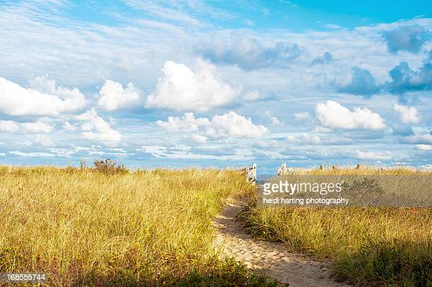 center hill preservation beach | plymouth ma - plymouth massachusetts stock photos and pictures