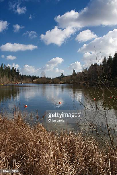 center parcs lake - longleat house stock pictures, royalty-free photos & images