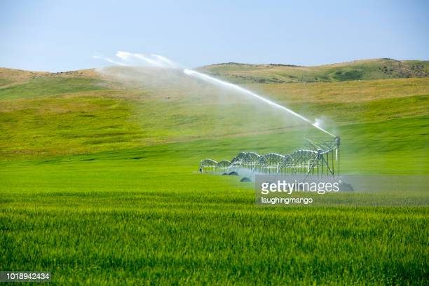 center pivot irrigation equipment - irrigation equipment stock pictures, royalty-free photos & images