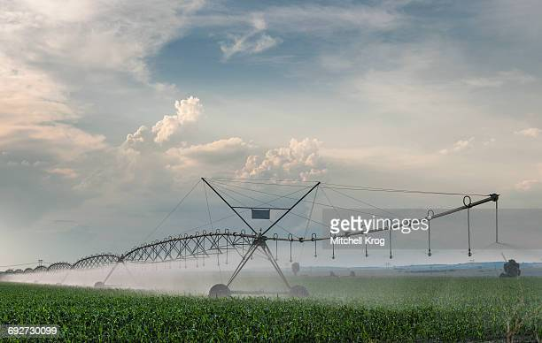 A Center Pivot Irrigation System in operation at dusk irrigation maize crops near the town of Magaliesburg, Gauteng Province, South Africa