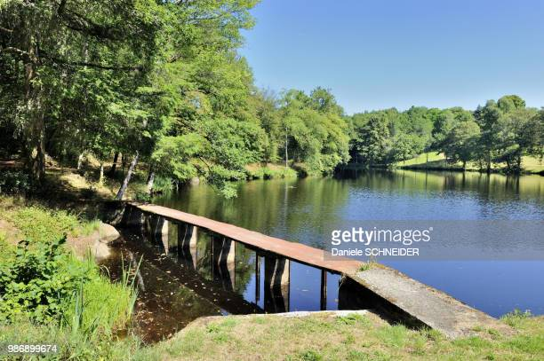 center region of france, clergoux, pond on the domaine de sedieres - correze stock pictures, royalty-free photos & images