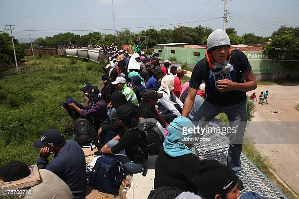 Central American immigrants arrive on top of a freight train on August 6 2013 to Ixtepec Mexico Thousands of Central American migrants ride the...