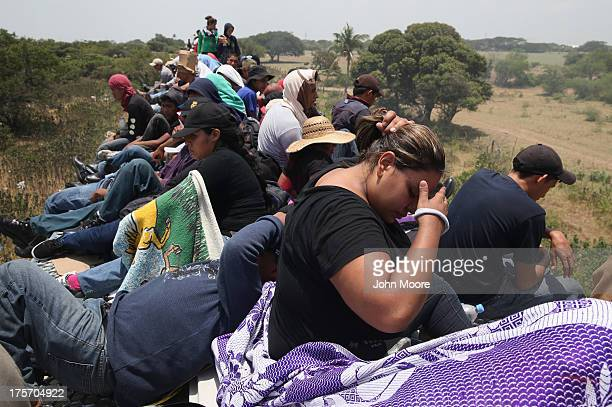 Central American immigrants ride under a blazing sun on top of a freight train on August 6 2013 near Juchitan Mexico Thousands of Central American...