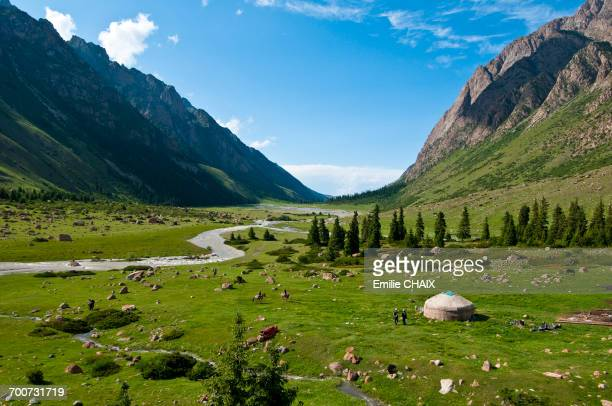 central asia, kyrgyzstan, issyk kul province (ysyk-k_l), juuku valley, every year tourar ousounbaev and nourgul toktosounovas family setlles for a few months in a yurt in the middle of juuku valley - kyrgyzstan stock pictures, royalty-free photos & images