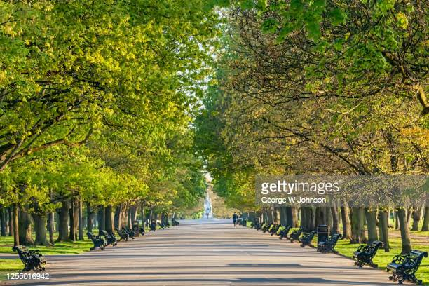 central avenue - park bench stock pictures, royalty-free photos & images