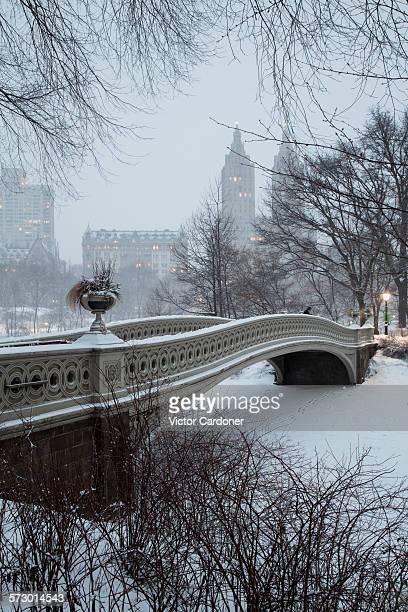 Central park after snowstorm