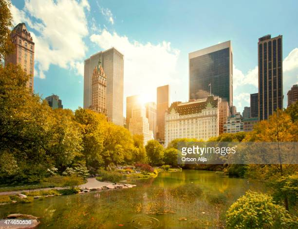 Central Park e Midtown Manhattan, New York City