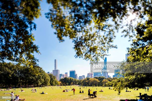Central Park and the New York Skyline on a clear Summer Day