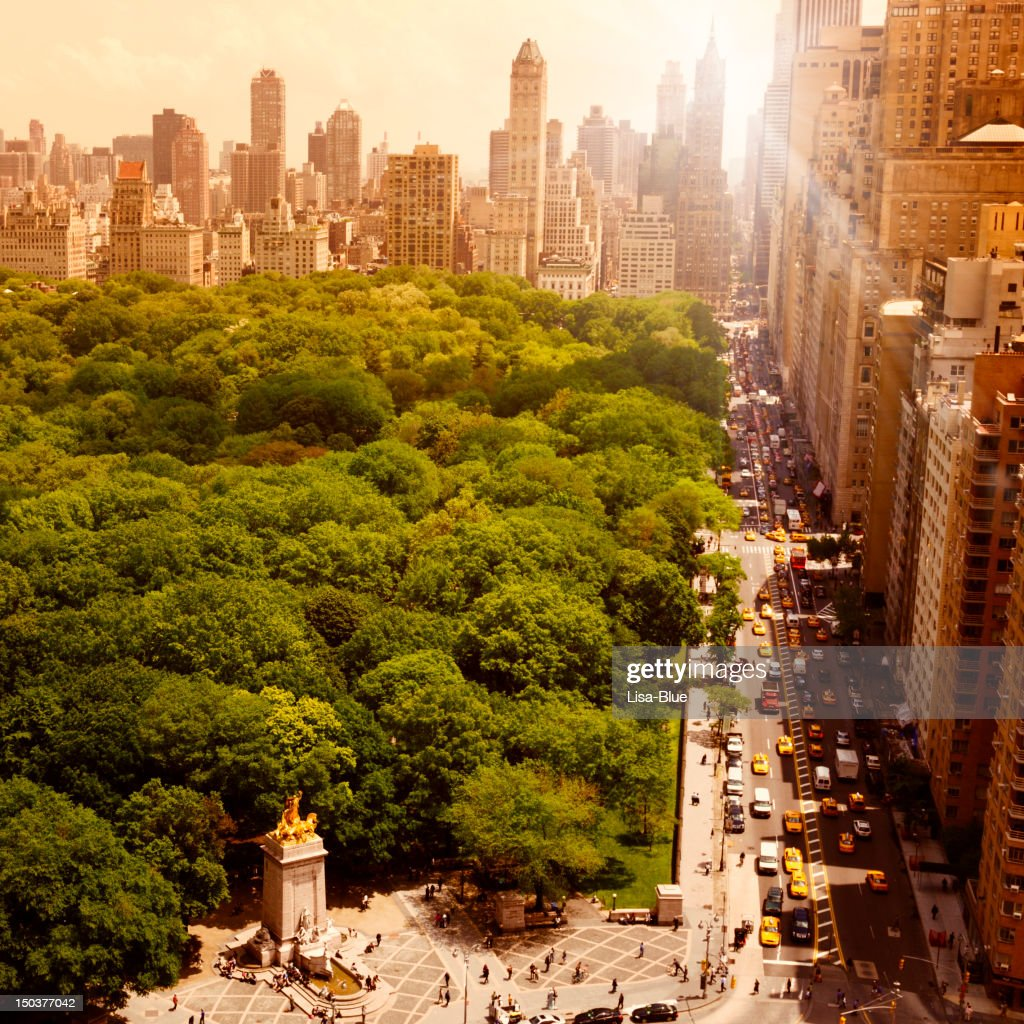 Central Park at Sunset, NYC. : Stock Photo