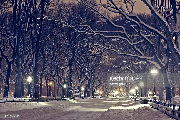 Central park by night during snow storm