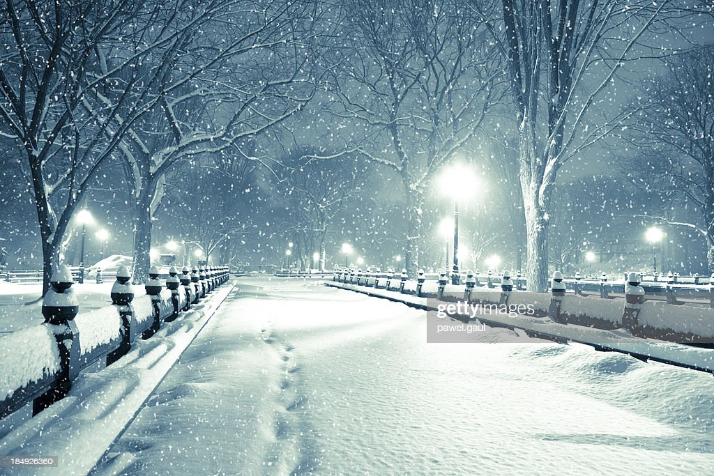 Central park by night during snow storm : Stock Photo