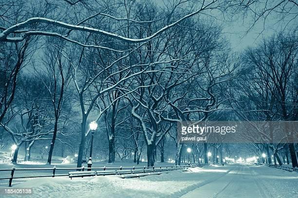 Central park à noite durante a tempestade de Neve