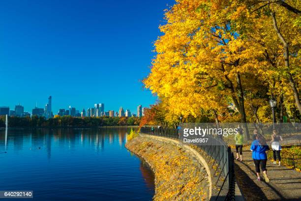 central park during autumn with skyline and people jogging - central park reservoir stock pictures, royalty-free photos & images