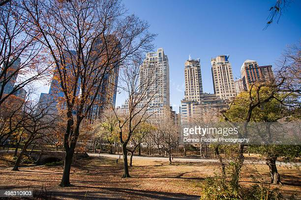 central park in autumn - national_historic_landmark stock pictures, royalty-free photos & images