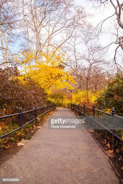 Central Park in autumn