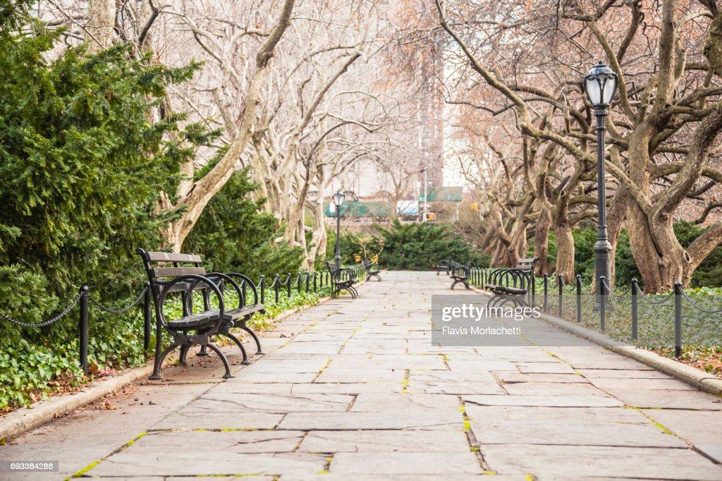 Central Park in autumn : Stock Photo