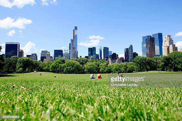 central park in manhattan, new york city, new york. - central park stock pictures, royalty-free photos & images