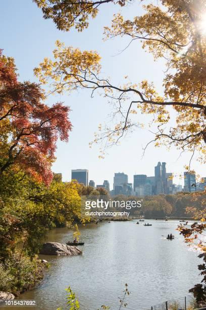 central park de nova york - central park manhattan - fotografias e filmes do acervo