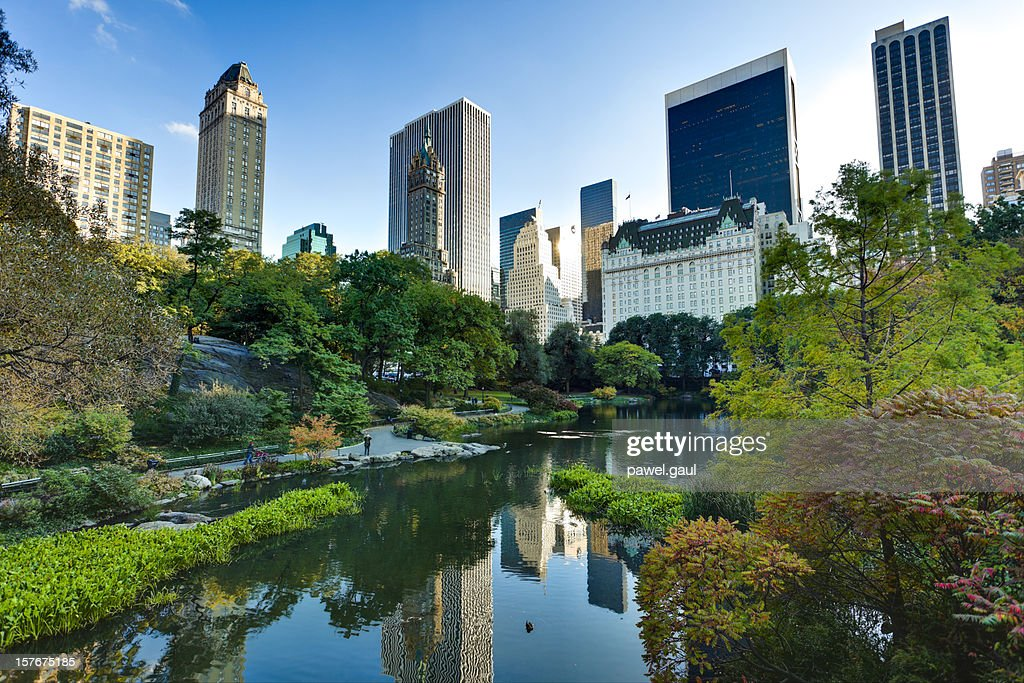 Central Park in New York City : Stock Photo