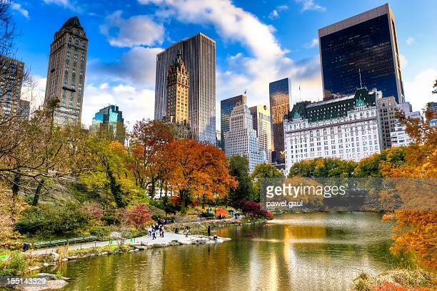 central park in new york during autumn season - central park stock pictures, royalty-free photos & images