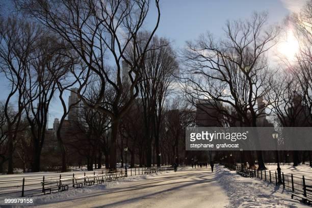 Central Park in the snow, Manhattan, New York, America, USA