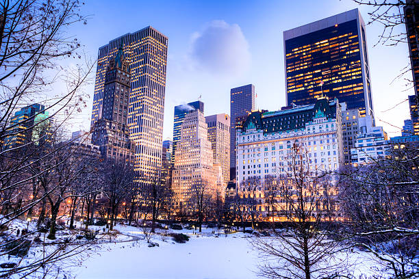 Central Park In Winter Wall Art