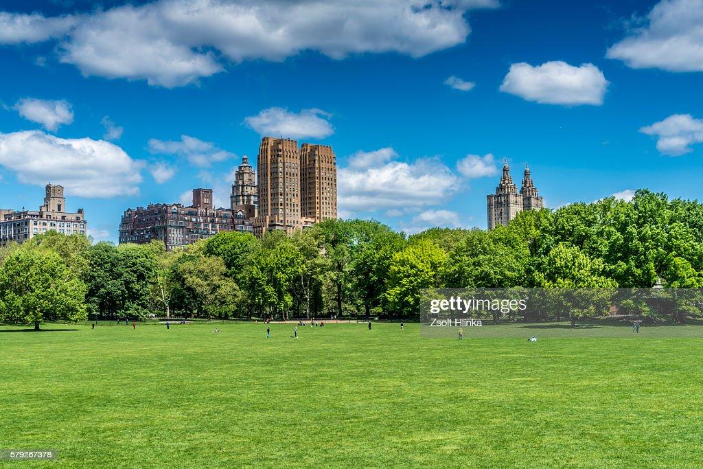 Central Park - New York : Stock Photo