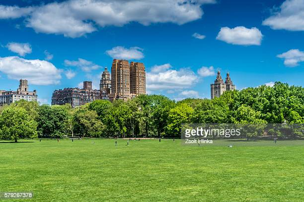 central park - new york - parkland stock pictures, royalty-free photos & images